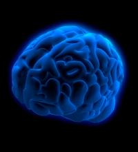 Blue Brain, Harry Tuttle, Modern Cave Dweller, Science Fiction, author